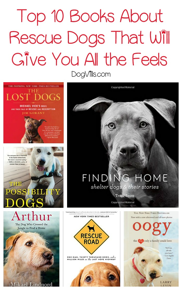 Top 10 Books About Rescue Dogs That Will Give You All the Feels