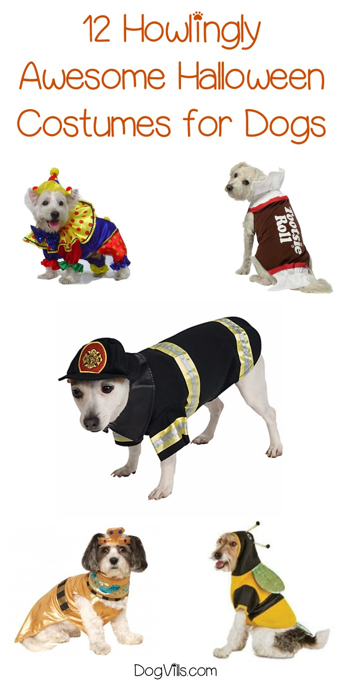 12 Howlingly Awesome Halloween Costumes for Dogs