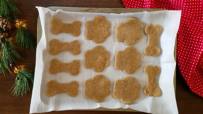 While you're baking the Christmas cookies this year, don't forget to whip up a special holiday dog treat for Fido! Check out our easy recipe!