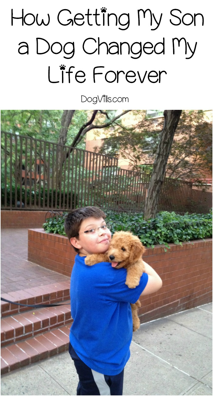 How Getting My Son a Dog Changed My Life Forever