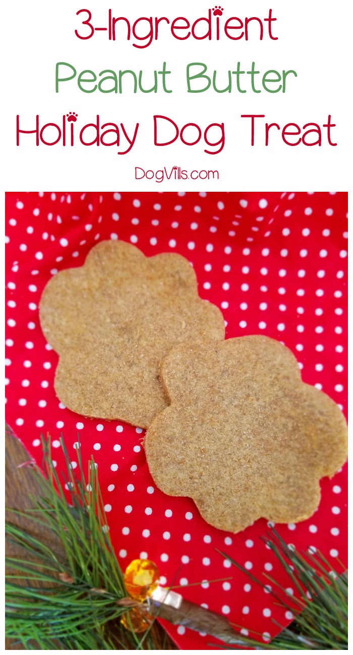 Easy 3-Ingredient Peanut Butter Holiday Dog Treat Your Pup is Begging For