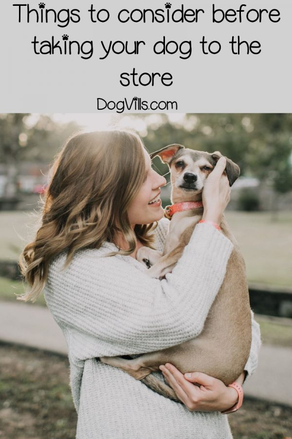 Major Stores That Allow Dogs In The US - (Extensive List)