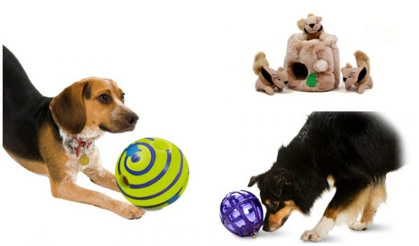 Looking for the best toys for low energy dogs? We're sharing some of our favorite interactive dog toys that will motivate your couch potato to get a bit more active!