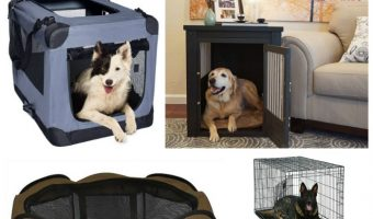 Looking for the best large dog crate ideas for your big pup? We've got you covered! Check out our top five picks!