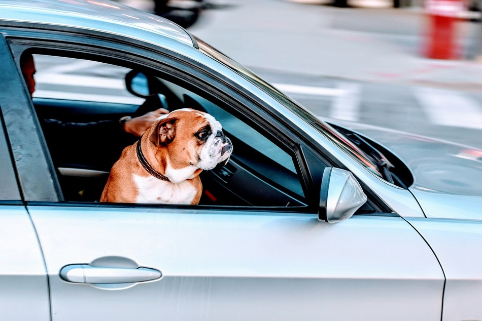 Can Car Air Conditioning Make You Sick
