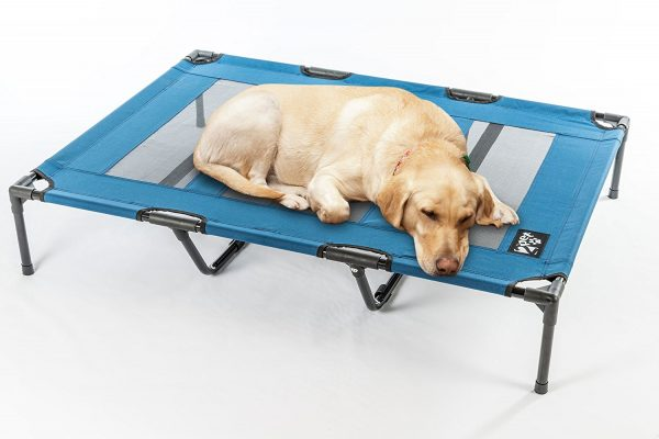 2PET Cooling Elevated Dog Bed best dog beds for chewers