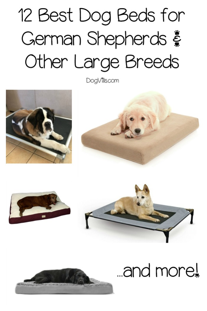 12 Best Dog Beds For German Shepherds Dogvills