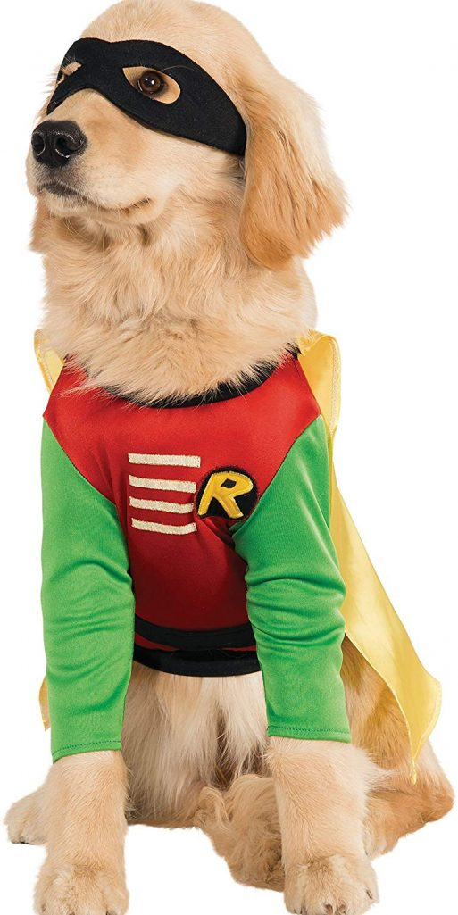 Robin from Teen Titans Dog Costume
