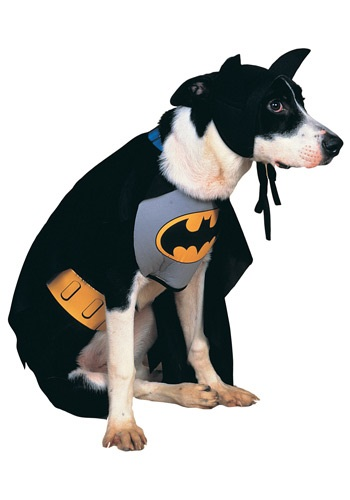 Classic Batman Pet Costume: Cutest Movie Inspired Dog Costumes For Halloween