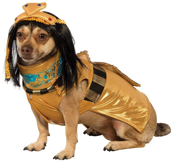 Your dog will be the Queen of the Nile with this Cleopatra costume!