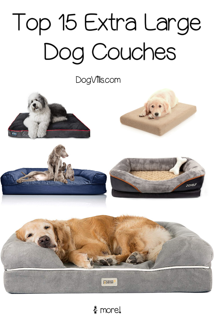 15 Best Extra Large Dog Couches