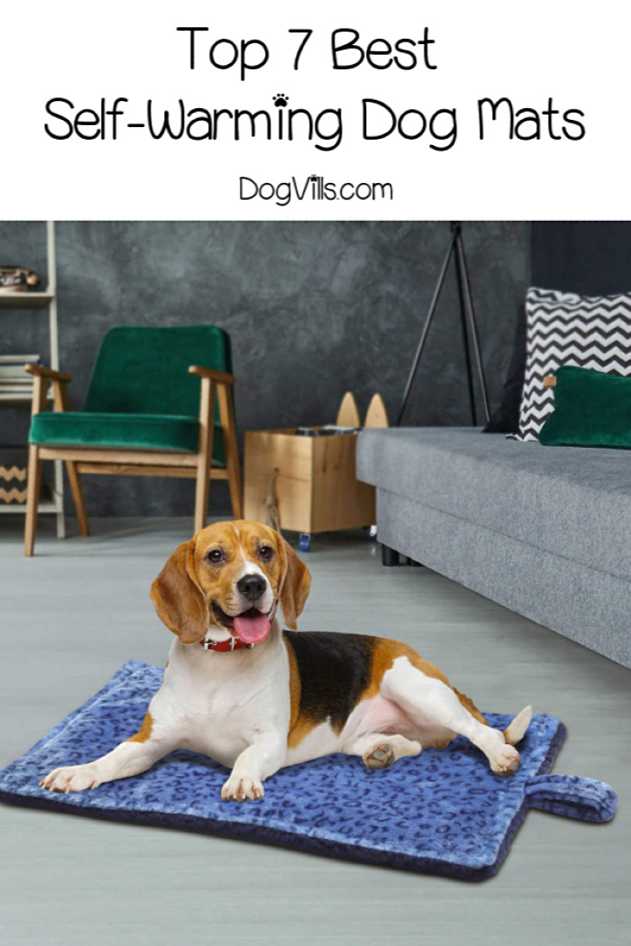 Top 7 Best Self-Warming Dog Mats (+ a DIY Pet Mat Tutorial)!