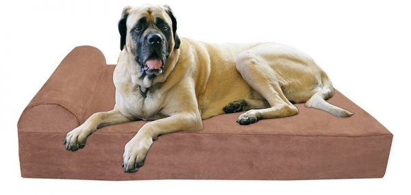 Big Barker bed review extra large