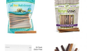 Looking for a great alternative to rawhide bones? Check out our bully sticks reviews and decide which one is best for your dog!