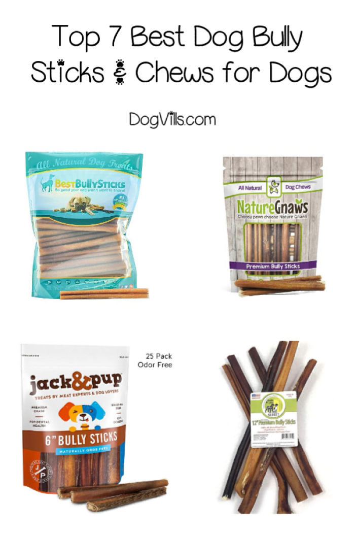 Top 7 Best Dog Bully Sticks & Chews (Better than Rawhide)