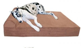 Is the Big Barker orthopedic dog bed right for your pup? Check out all the features, pro & cons, and alternatives to help you make an informed decision!