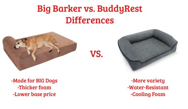 Big Barker vs BuddyRest Dog Bed Differences
