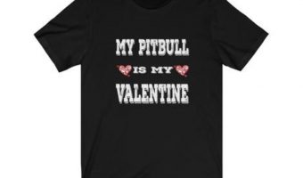"Get ready to say ""awww,"" you're going to love these adorable Valentine's Day gifts for pitbull lovers! Check them out and get them for your special someone!"