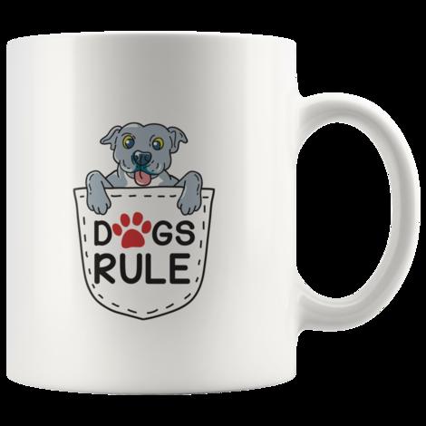 blue nose pocket pitbull puppy