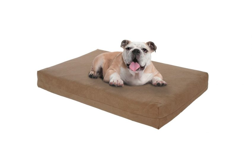 DogOnIt All Seasons Memory foam dog bed