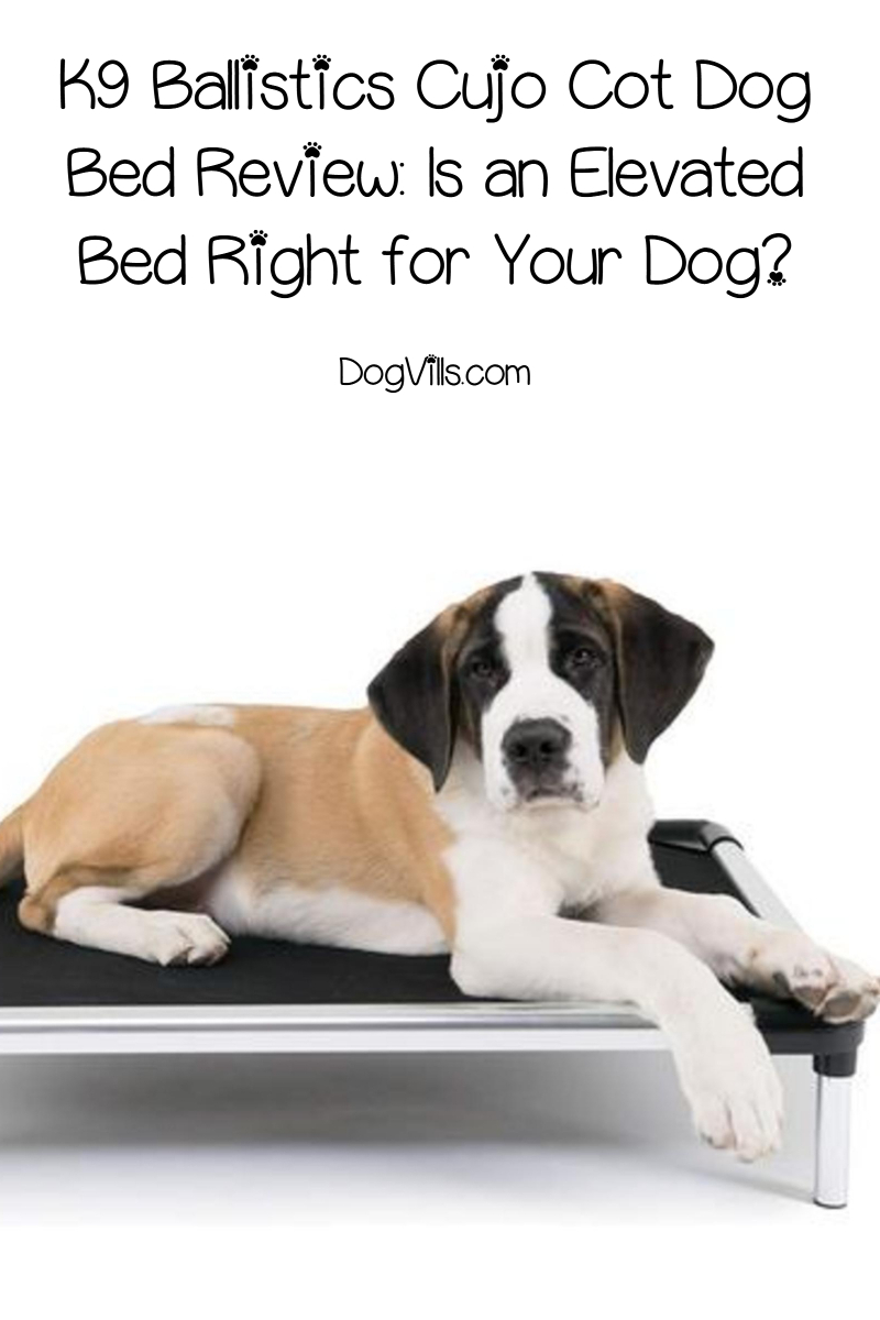 K9 Ballistics Cujo Cot Dog Bed Review: Is an Elevated Bed Right for Your Dog?
