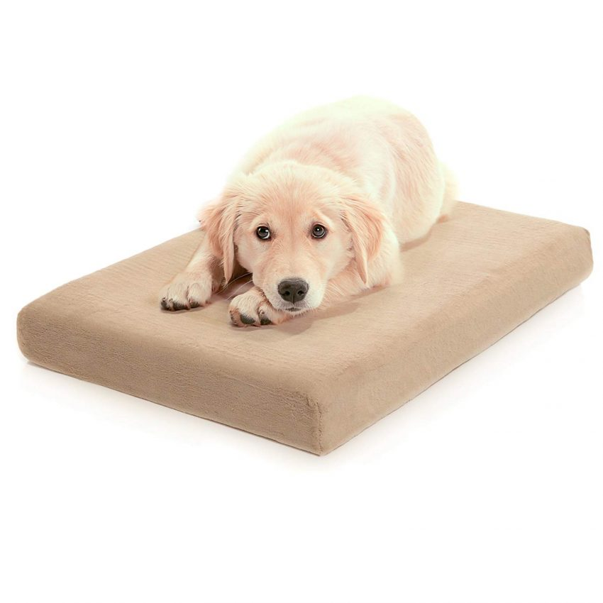 Looking for a good budget-friendly dog bed? Check out our Milliard Premium Orthopedic Pet Bed review to see if it's right for your pup!