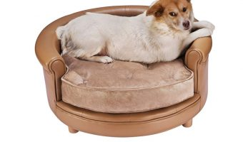 Looking for the best leather dog beds? We've got you covered! Read on to discover our top 5 favorite leatherette and suede beds for your dog.