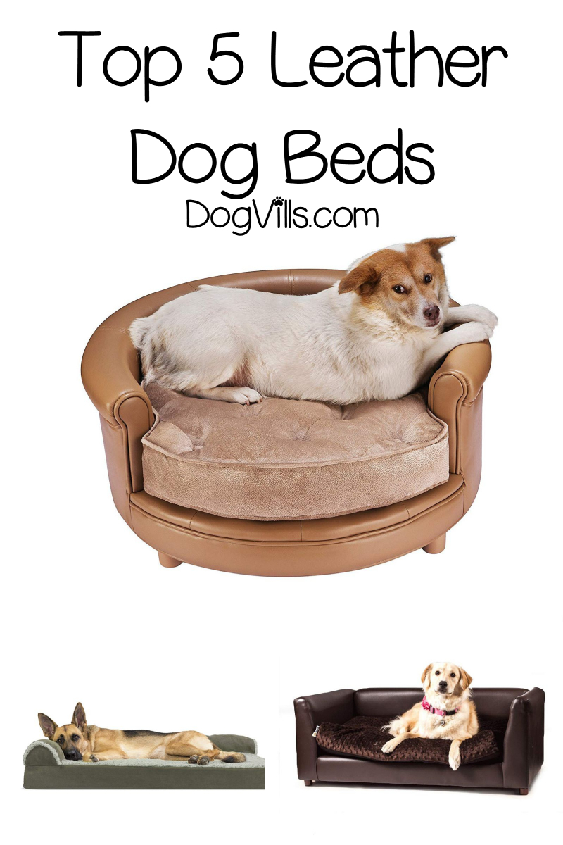 Top 5 Leather Dog Beds (With Reviews)