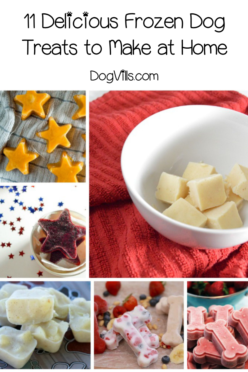 11 Delicious Frozen Dog Treats to Make at Home