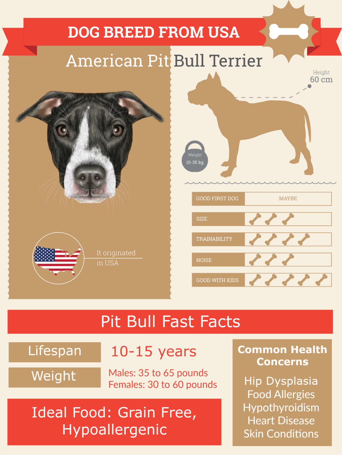 Blue Nose PitBull Lifespan: Complete health guide (infographic)