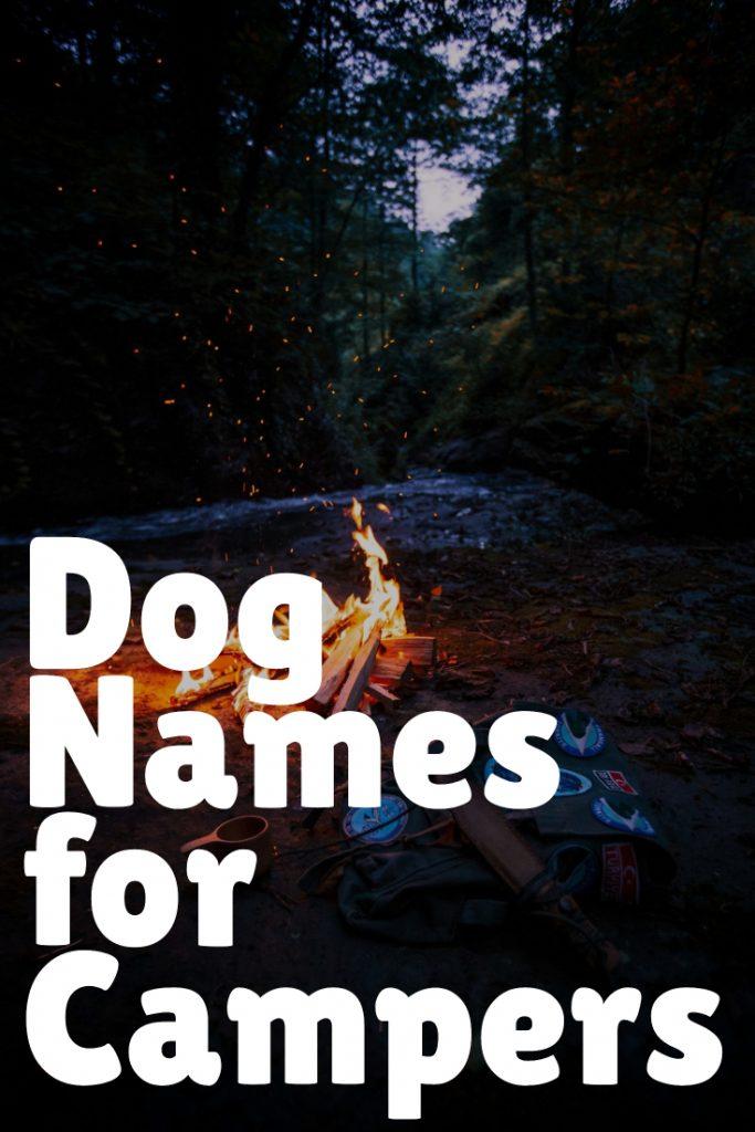 Camping Dog Names