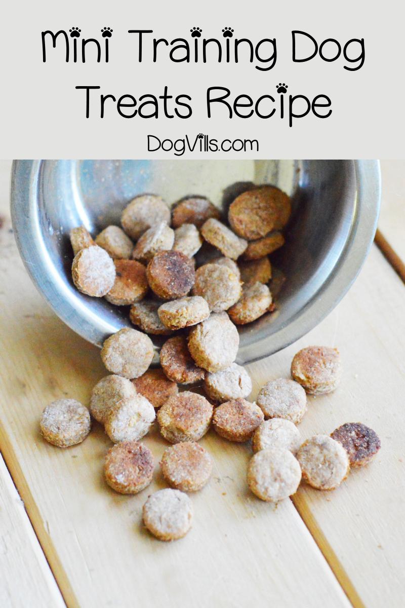 Easy Mini Training Dog Treats Recipe