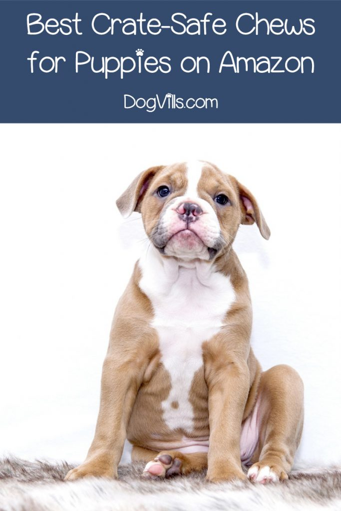 What are your favorite crate safe chews to leave with your puppy? Read on to find out our top ten picks!