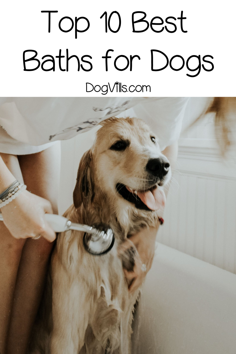 Top 10 Best Baths for Dogs (with Reviews)