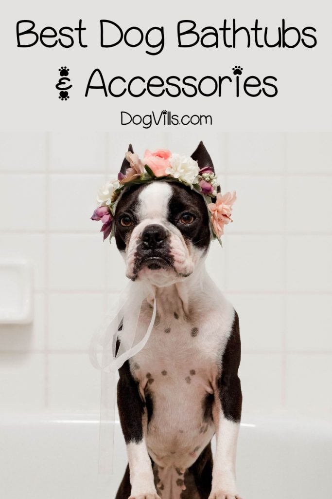 Finding the best baths for dogs is as hard as choosing a new tub for your own bathroom! No worries, though, I've got you covered! Check out 10 great picks!