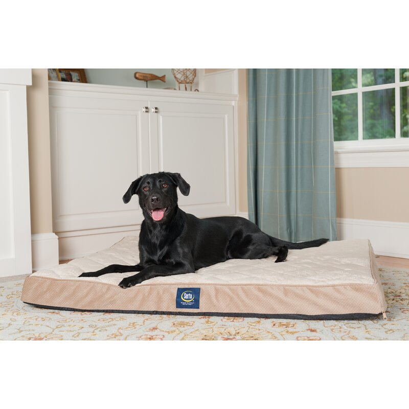 Why is Serta one of the best dog beds for a Great Pyrenees?