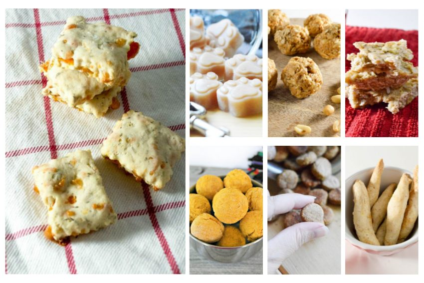 If you need some inexpensive ideas for training treats, check out these 25 irresistible (yet easy) homemade dog treat recipes!