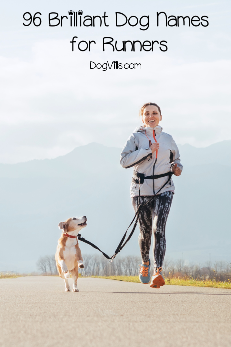96 Brilliant Dog Names For Runners