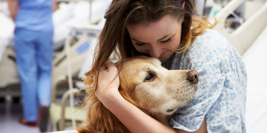 Should you get a puppy for a terminally ill relative? While dogs can lift our spirits, there are downsides, too. Look at the pros and cons.
