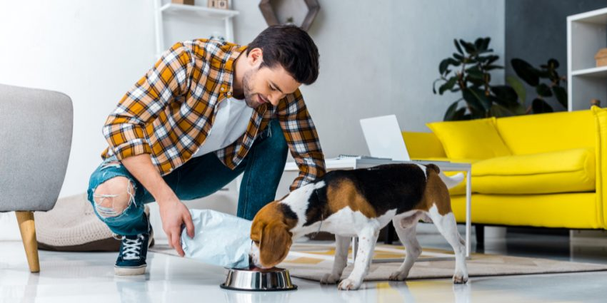 """Keto for dogs"" is trending almost as hard as the human version of the carb-restrictive diet, but is it worth all the hype? Read on to find out!"