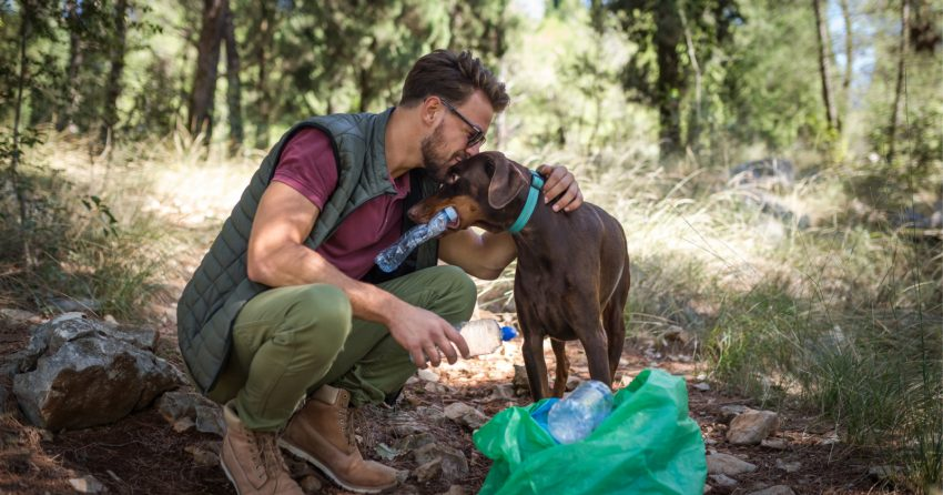Want to save the planet while caring for your pup? Check out our favorite eco-friendly dog products that will help you do just that!