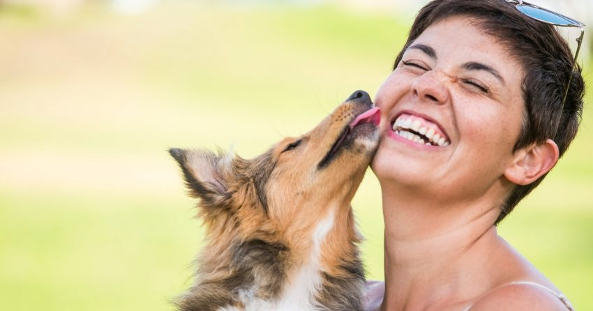 If your pooch loves to give you big slobbery slurps, keep reading for some truly intriguing facts about dog kisses!