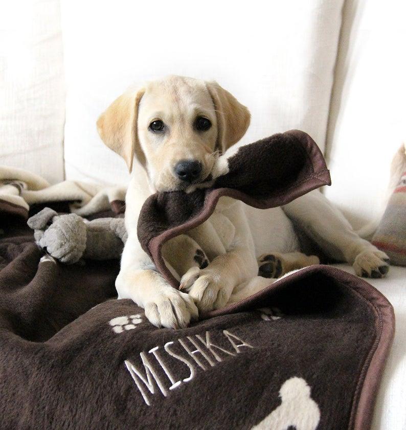 Personalized Dog Blanket
